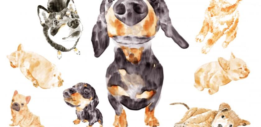 狗狗紙膠帶扭蛋機